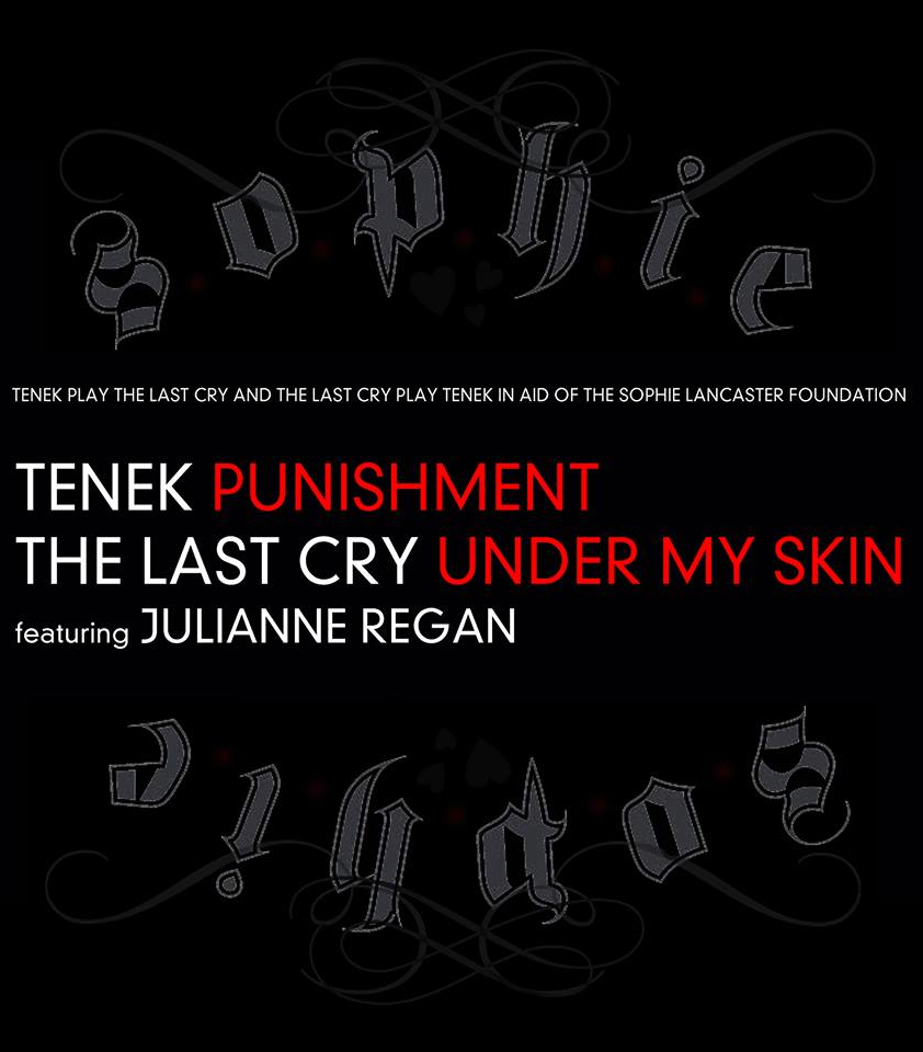 The Last Cry TENEK Julianne Regan